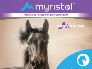 Horse Joint Health Supplements - Myristol Equine