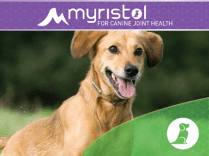 Dog Joint Supplement - Myristol