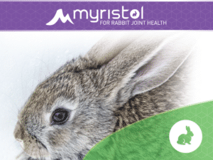 Rabbit Joint Supplements