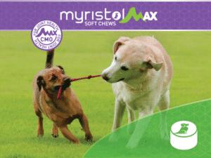 MaxChews - Dog Joint Health Supplements